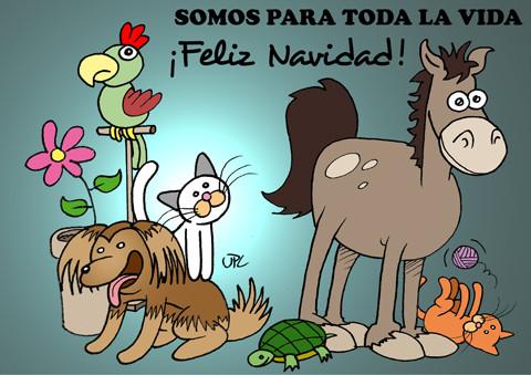 tarjetas y postales de animales para navidad