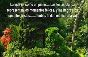 imagenes la vida es como el piano