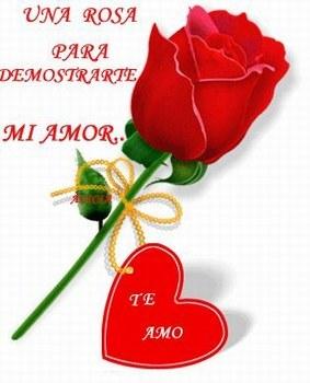 postales de rosa de amor