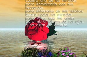 Imagenes con Frases Romanticas Enamorados