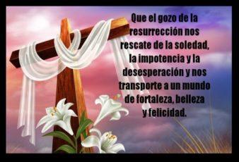 Que el Gozo de la Resurreción nos salve de la Soledad