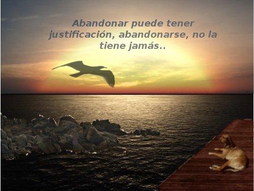 Abandonar Puede tener justificación, pero abandonarse no lo tiene jamas