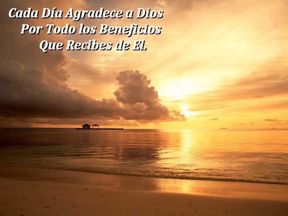 Cada dia agradece a dios por todo lo que te da dia a dia