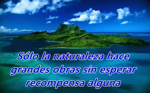 Solo la naturaleza hace grandes cosas sin recibir nada a cambio