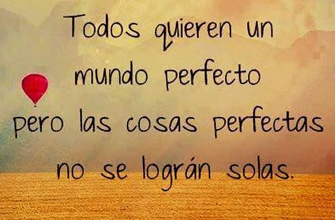 todos quieren un mundo perfecto las cosa perfectas no se logran solas