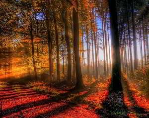 Imagenes de bellos paisajes