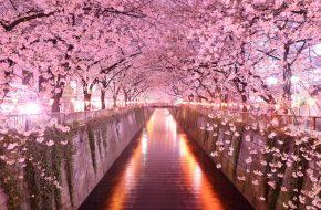 Imagenes de paisajes hermosos
