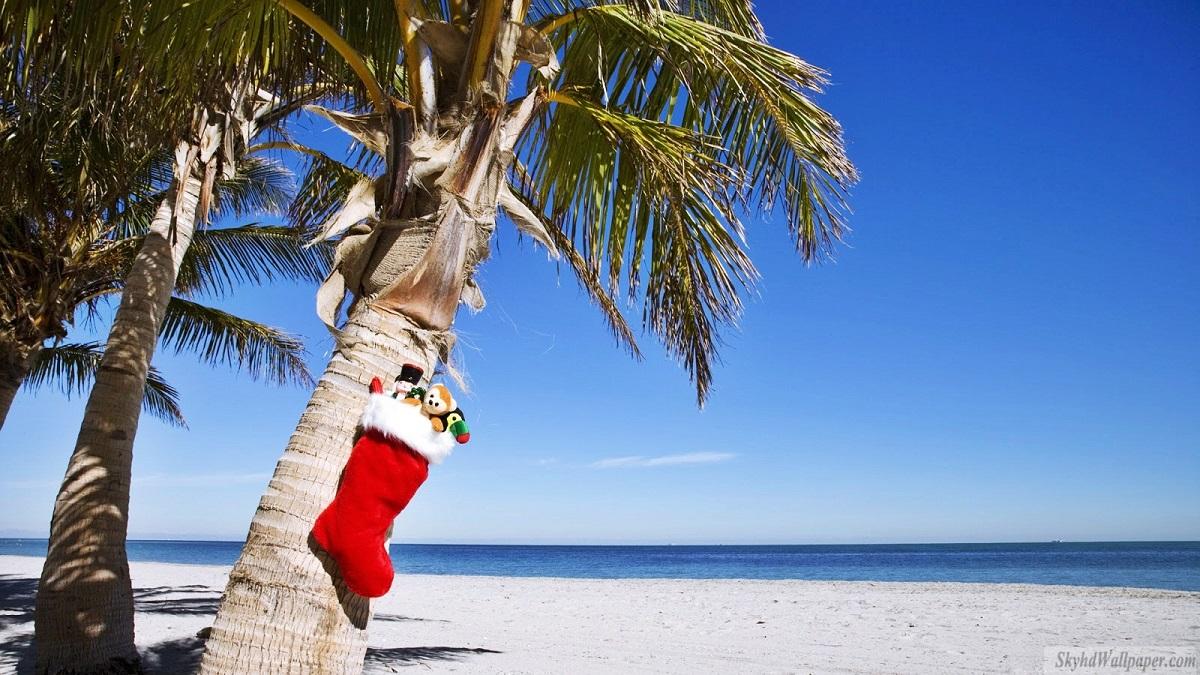 Fondos de Pantalla Playa Tropical de Navidad Gratis para Descargar