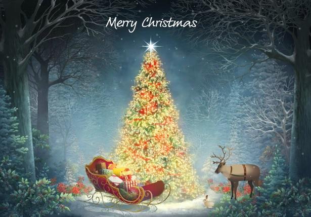 Imágenes Bonitas de árbol de Navidad - Banco de Imagenes Gratis