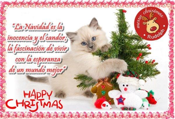 Tarjetas de Navidad para compartir gratis