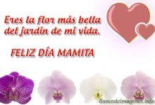 Tarjetas Postales del Día de la Madre para Compartir